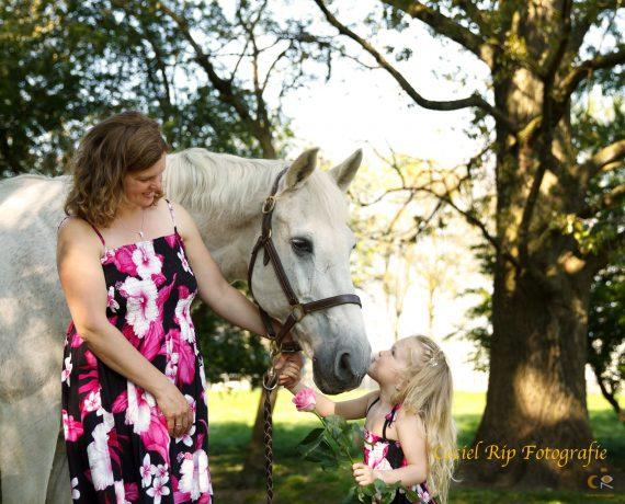 de band met je paard, fotoshoot, paardenfotografie, cecielripfotografie